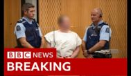 Christchurch shootings: Suspect Brenton Tarrant appears in court