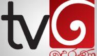 Derana TV (Sinhala)